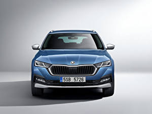 Pictures Skoda Blue Metallic Front Octavia Scout, 2020 Cars
