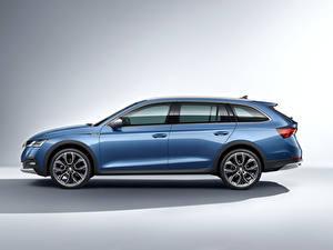 Image Skoda Metallic Side Estate car Light Blue Octavia Scout, 2020 automobile