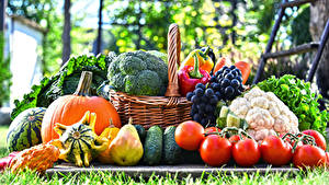Wallpaper Vegetables Fruit Grapes Pears Pumpkin Tomatoes Wicker basket Food