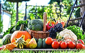 Wallpaper Vegetables Fruit Grapes Pears Pumpkin Tomatoes Wicker basket