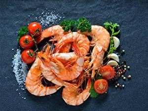 Bilder Meeresfrüchte Caridea Tomate Grauer Hintergrund Salz Lebensmittel
