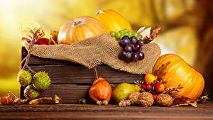 Bilder Kürbisse Herbst Birnen Schalenobst Weintraube Lebensmittel