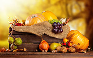 Picture Pumpkin Autumn Pears Nuts Grapes Food