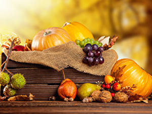 Picture Pumpkin Autumn Pears Nuts Grapes