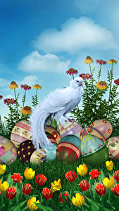 Fotos Ostern Feiertage Vögel Tulpen Eier Design Blumen