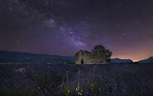 デスクトップの壁紙、、フランス、畑、ラベンダー、空、恒星、廃墟、夜、Valensole、自然