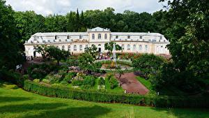 Bilder Russland Sankt Petersburg Parks Springbrunnen Palast Design Strauch Rasen Peterhof Natur Städte