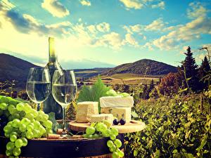 Bilder Stillleben Wein Weintraube Käse Flasche Weinglas