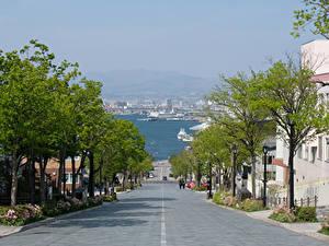 Fotos Japan Gebäude Wege Straße Bäume Hakodate
