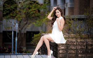 Fotos Asiatisches Strauch Braune Haare Lächeln Kleid Hand Bein Stöckelschuh Sitzt Schön junge frau