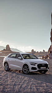 Hintergrundbilder Audi Grau Metallisch 2018 Q8 55 TFSI quattro Worldwide automobil