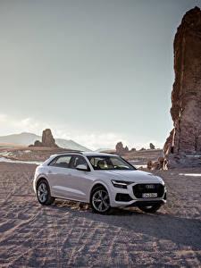 Hintergrundbilder Audi Grau Metallisch 2018 Q8 55 TFSI quattro Worldwide Autos