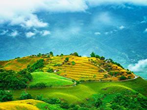 Bilder Taiwan Felder Hügel