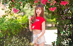 Hintergrundbilder Asiatische Ast Braune Haare Hand Blick Shorts Mädchens
