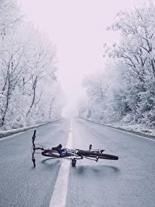 Hintergrundbilder Winter Straße Asphalt Bäume Fahrrad