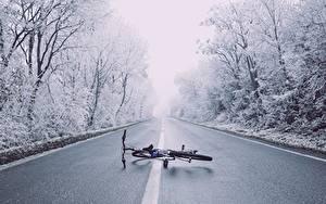 Hintergrundbilder Winter Straße Asphalt Bäume Fahrrad Natur