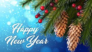Fotos Neujahr Beere Englisch Ast Zapfen Schnee 3D-Grafik