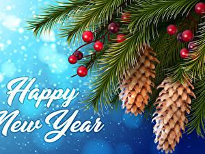 Fotos Neujahr Beere Englisches Ast Zapfen Schnee 3D-Grafik