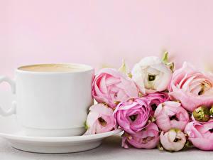Hintergrundbilder Ranunkel Kaffee Tasse Blumen