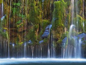 Fotos Vereinigte Staaten Wasserfall Kalifornien Felsen Laubmoose Mossbrae falls Natur