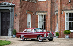 Bilder Mercedes-Benz Antik Bordeauxrot Coupe 1959-65 220 SEb Coupe Autos