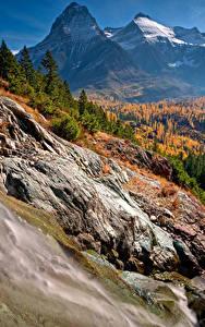 Fotos Vereinigte Staaten Herbst Park Gebirge Wälder Landschaftsfotografie Glacier National Park Natur