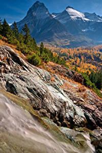Fotos Vereinigte Staaten Herbst Park Gebirge Wälder Landschaftsfotografie Glacier National Park