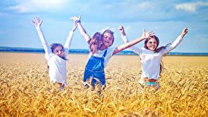 Bilder Felder Ähre Drei 3 Kleine Mädchen Hand Freude Kinder