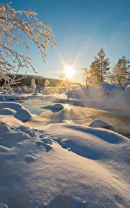Fotos Winter Sonnenaufgänge und Sonnenuntergänge Schnee Ast