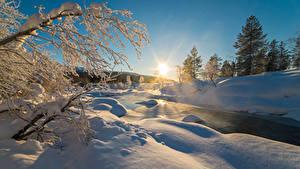 Fotos Winter Sonnenaufgänge und Sonnenuntergänge Schnee Ast Natur