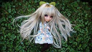 Hintergrundbilder Puppe Kleine Mädchen Blond Mädchen Haar