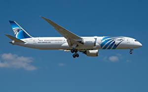 Bilder Boeing Flugzeuge Verkehrsflugzeug Seitlich 787-9, Egypt Air, Dreamliner