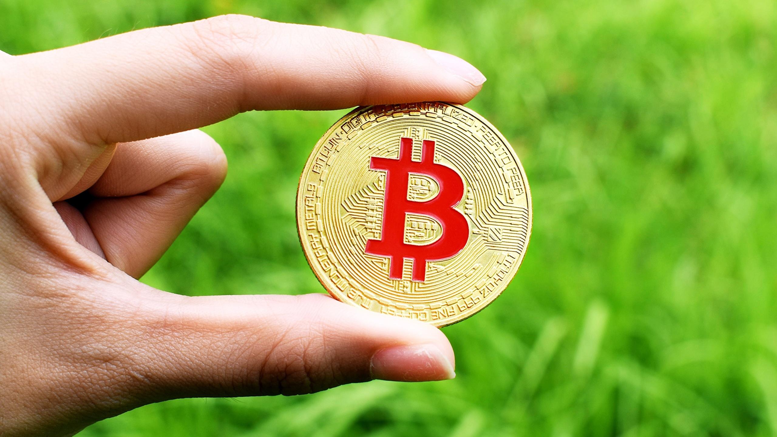 Desktop Wallpapers Coins Bitcoin Gold color Money Fingers 2560x1440