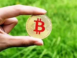 Hintergrundbilder Finger Großansicht Bitcoin Münze Geld Gold Farbe