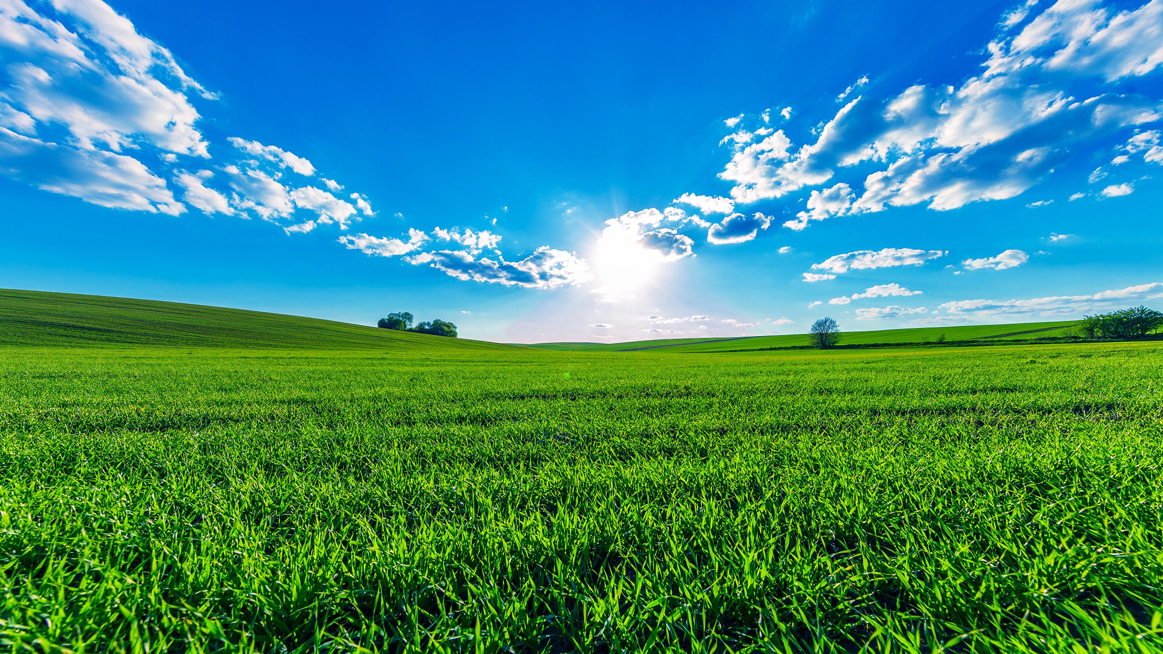 壁紙 3840x2160 風景写真 畑 空 夏 雲 自然 ダウンロード 写真