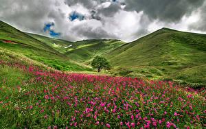 Fotos Frankreich Landschaftsfotografie Grünland Hügel Wolke Gras Savoie Natur