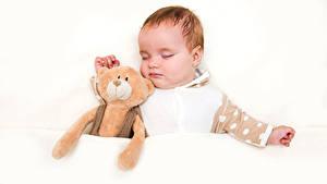 Fotos Knuddelbär Weißer hintergrund Säugling Schlaf kind