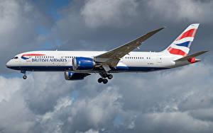 Hintergrundbilder Boeing Flugzeuge Verkehrsflugzeug Seitlich British Airways, 787-8