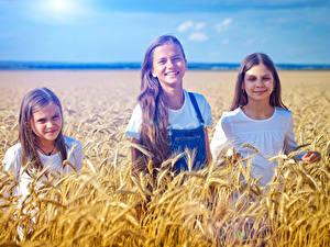 Bilder Acker Ähren Drei 3 Kleine Mädchen Lächeln kind