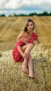Fonds d'écran Foin Assis Jambe Les robes Ananda Dmitry Medved jeune femme