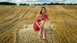 Fotos Heu Sitzen Bein Kleid Ananda Dmitry Medved junge frau