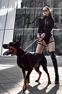 Hintergrundbilder Hunde Dobermann Bein Schöne Model Pose Yuri Semenov Tiere
