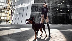 Hintergrundbilder Hunde Dobermann Bein Schöne Model Pose Yuri Semenov junge Frauen Tiere