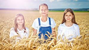 Fotos Acker Ähre Kleine Mädchen Drei 3 kind