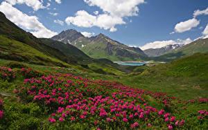 Hintergrundbilder Frankreich Landschaftsfotografie Rhododendren Gebirge Hügel Wolke Savoie