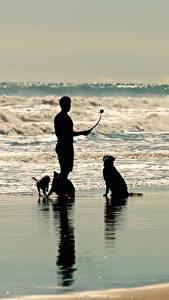 Fotos Meer Wasserwelle Mann Hund Silhouette ein Tier