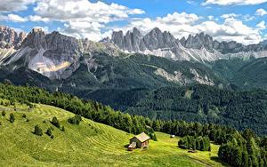Fotos Italien Gebirge Wälder Gebäude Grünland Landschaftsfotografie Alpen Bressanone