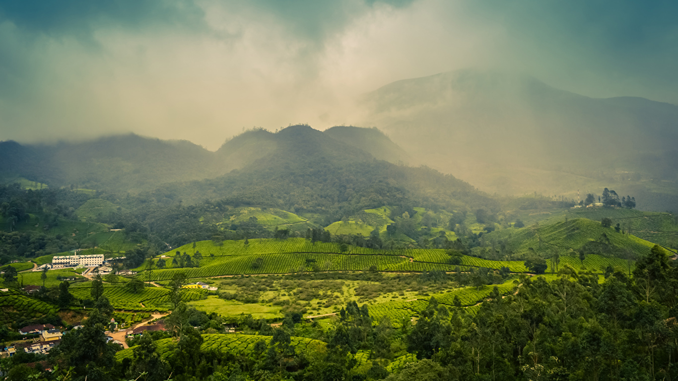 Desktop Wallpapers India Muthirapuzha Kerala Fog Nature 1366x768