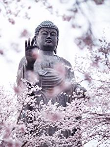 Hintergrundbilder Skulpturen Buddha
