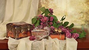 Hintergrundbilder Stillleben Flieder Tee Vogel Schatztruhe Tasse Blumen